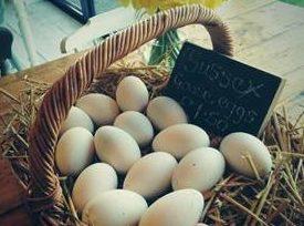 Broadbourne Poultry Farm
