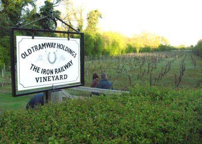Iron Railway Vineyard